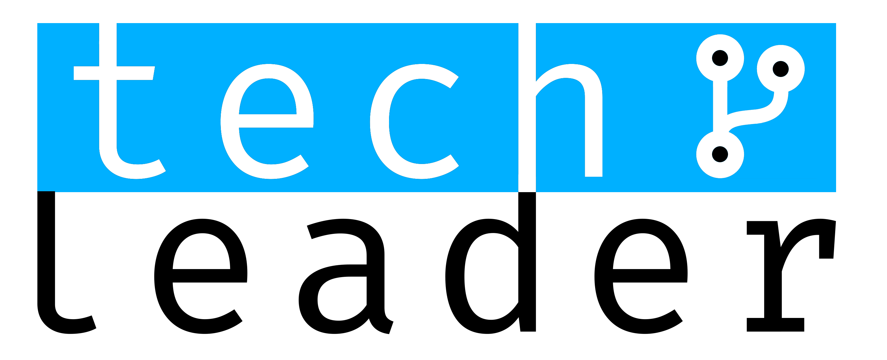 Logo Tech Leader